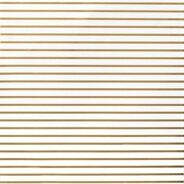 Лист кардстока DIY Shop 2 Thin Gold Foil Stripe On White от American Crafts